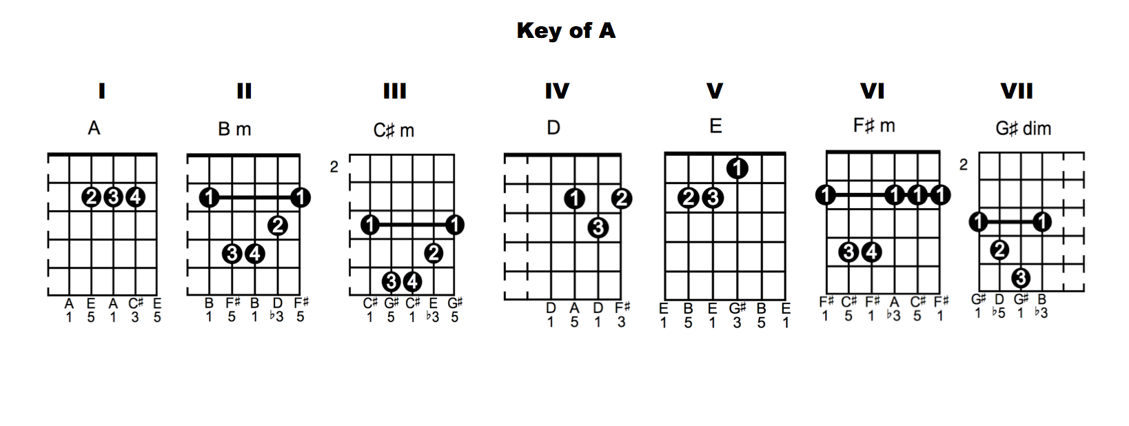 Expanding your chord vocabulary my guitar teacher my guitar key of a chords 1024x386 chord vocabulary lesson 6 hexwebz Gallery
